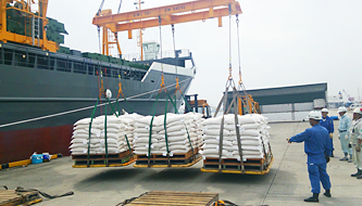 Loading bags of rice